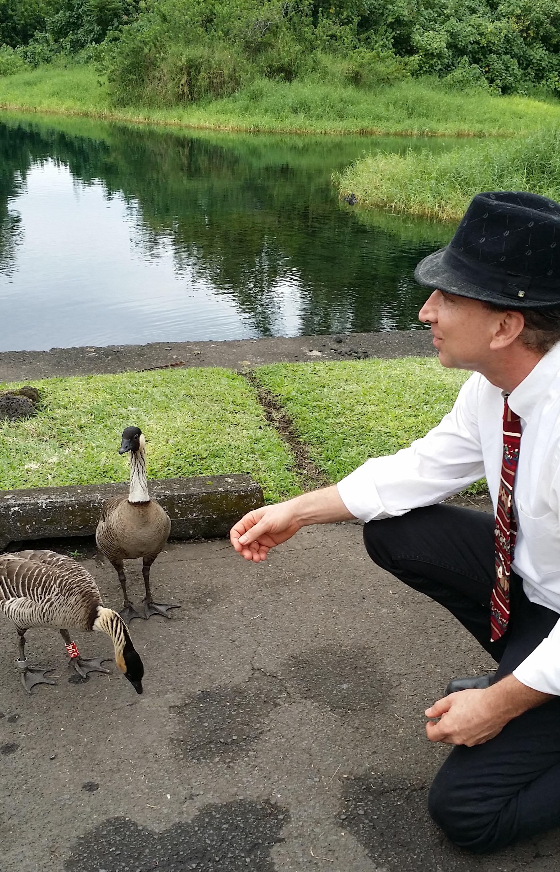 Kai with nene geese