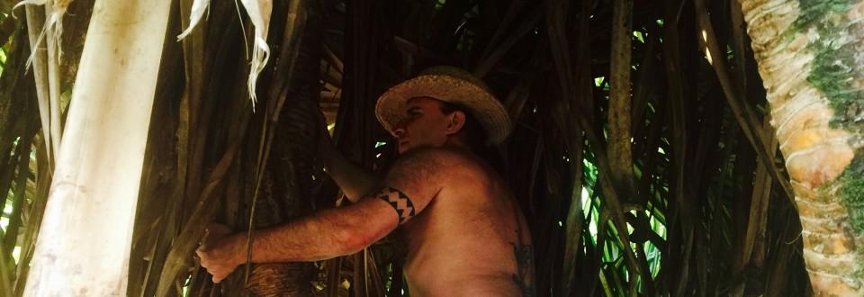 Kai climbing lauhalla tree